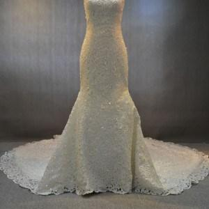 wedding gowns with alencon lace
